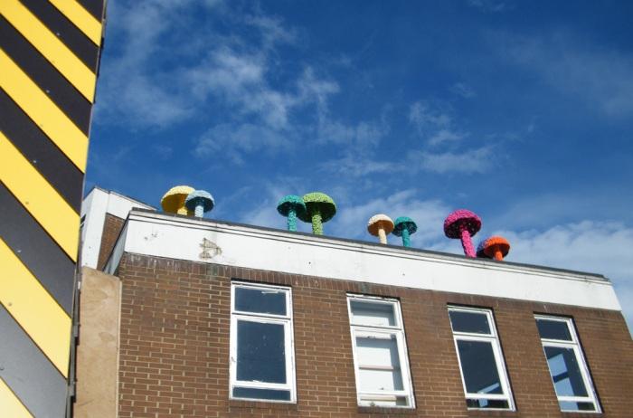 Christiaan Nagel.Fresh Mushroom growth at the top of Vyner Street, May 23rd 2013