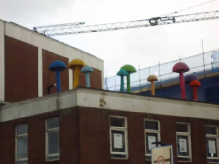 Christiaan Nagel's mushrooms, at the top of Vyner Street