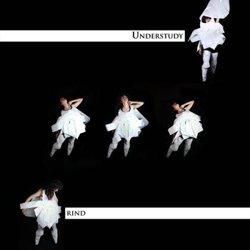 lee_understudy