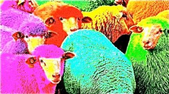 chineseopen_sheep
