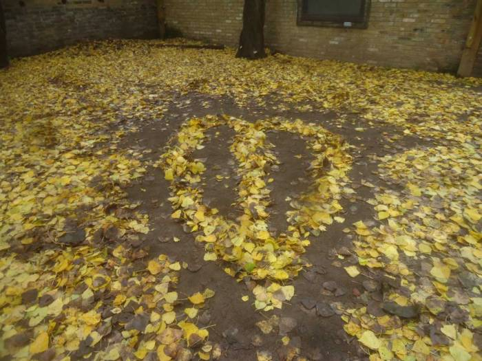 leaves (SW)