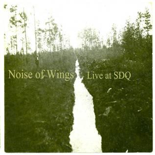 noiseofwings_cover