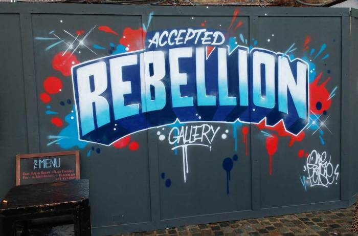 Accepted Rebellion, opening night, June 2016