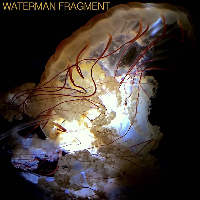 waterman_fragment