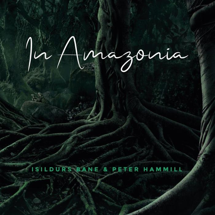 hammill_ib_album