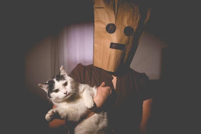 throwaway_cat