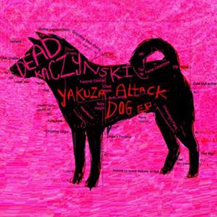 dead_kaczynski_cover